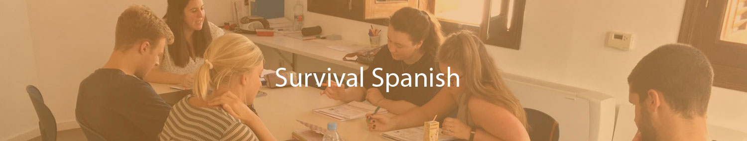 Euroace Survival Spanish