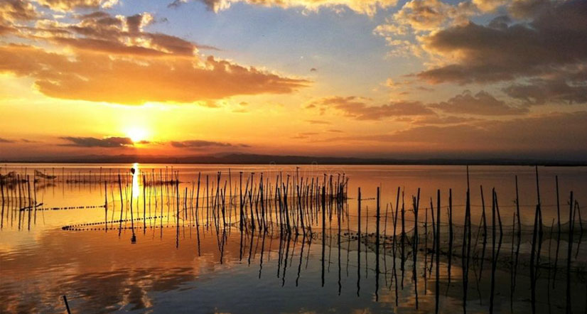 Escape to nature: The Albufera
