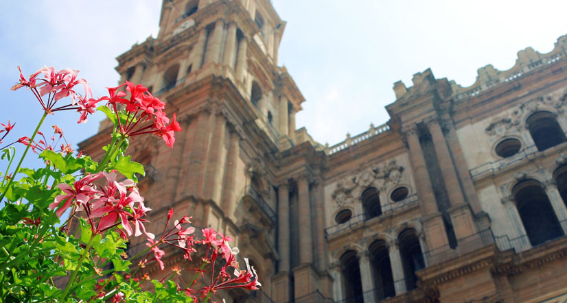 Why Spain is so attractive to international students?
