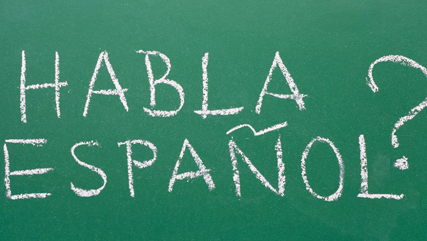 What's the best way to learn a language