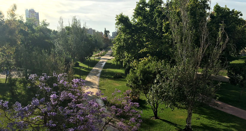 Things to do in Valencia like a local